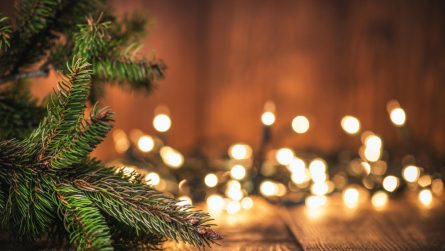 Kitsons Charity Christmas Quiz - Kitsons Solicitors